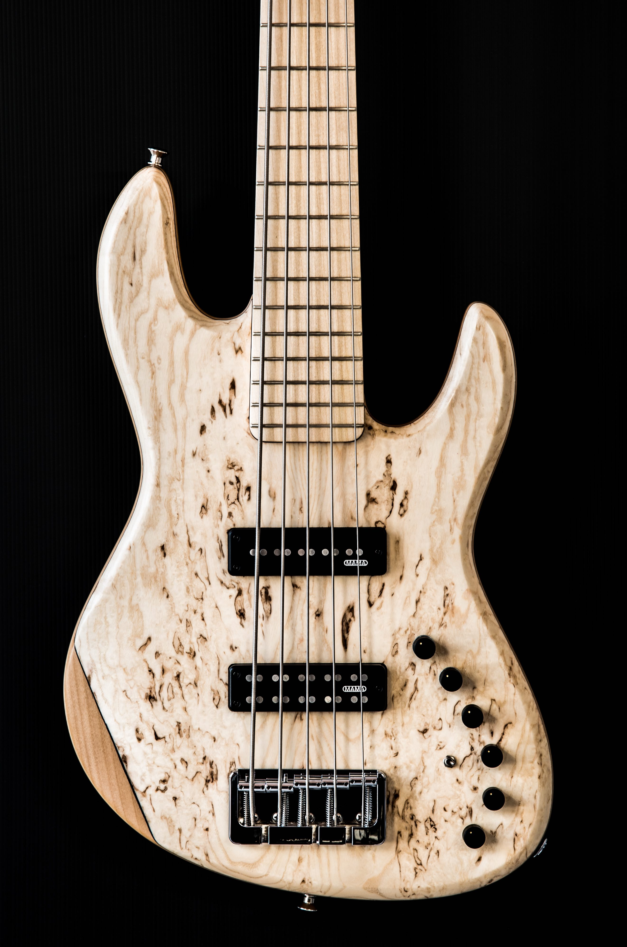 You are currently viewing Polaris deluxe 5 strings ash burl top