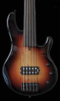 Supertone Palladio fretless_body